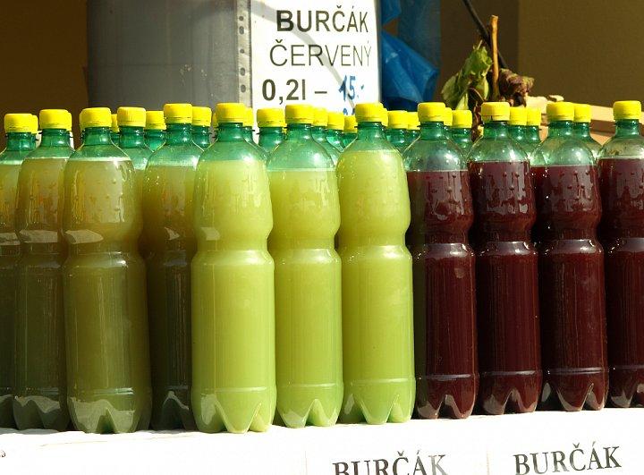 burcak-1