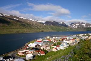 Icelandic village
