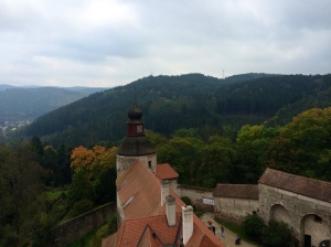View of the woods and valleys from the top of the Castle.